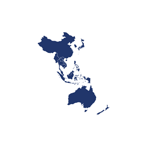 Asia Pacific Map Icon